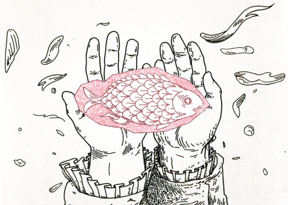 Alix Pentecost-Farren illustration